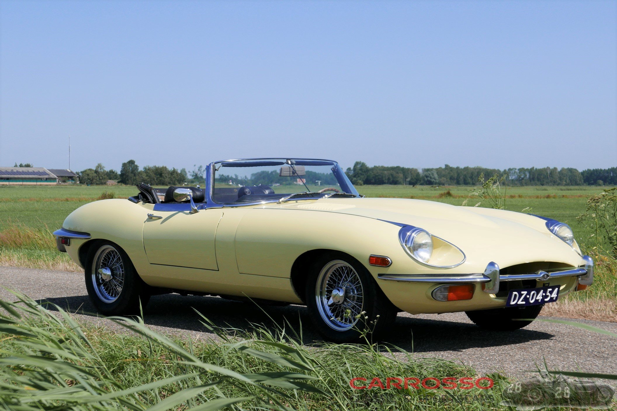 17Jaguar E type S2 (87)